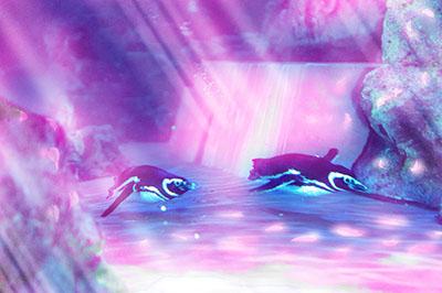 """【3月19日(土)から】すみだ水族館 新プロジェクションマッピング""""ペンギンピクニック""""が開催!"""