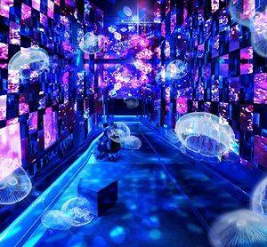 """すみだ水族館×清川あさみ """"フェアリーテール イン アクアリウム(Fairy tale in Aquarium)~水と幻想の世界~""""が9/29(金)から開催!"""