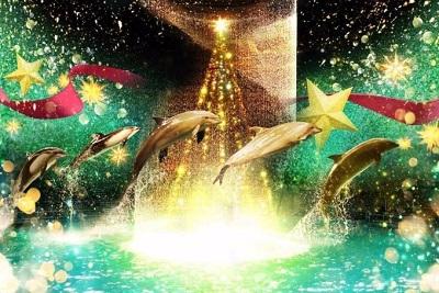 """アクアパーク品川がクリスマスイベント""""スターアクアリウム バイ ネイキッド(STAR AQUARIUM by NAKED)""""を本日より開催!"""